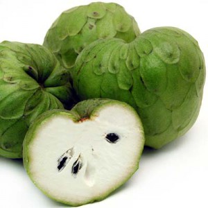 fruit-feuille-annona-cherimola-cherimoya-churimoya-chirimoya-anti-cancer (11)